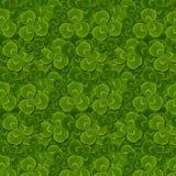 Leaves clover trefoil shamrock  pattern. St. Patrick green background Royalty Free Stock Photo