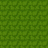 Leaves clover trefoil shamrock  pattern. St. Patrick green background Royalty Free Stock Photography