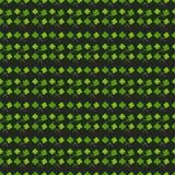 Leaves clover trefoil shamrock  pattern Stock Image