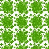 Leaves clover trefoil shamrock  pattern Stock Images