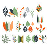 Leaves Collection Modern Design Stock Images