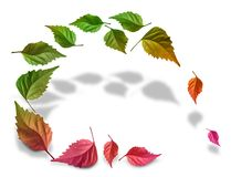 Leaves_color_background Images libres de droits