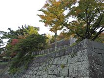 Leaves color change at Morioka Castle Ruins Park. Leaves color change at Morioka Castle Ruins Park in Japan royalty free stock images