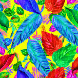 Leaves colorful pattern. Foliage background. Watercolor illustration Royalty Free Stock Image