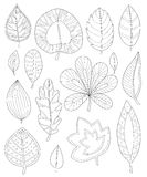 Leaves coloring for adults Stock Photography