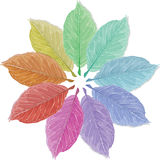 Leaves in the colors of the rainbow Royalty Free Stock Image
