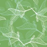 Leaves contours on green background. floral seamless pattern, hand-drawn. Vector Royalty Free Stock Images