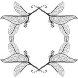 Leaves contours on a white background. floral border. Sketch fra Royalty Free Stock Photo