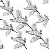 Leaves contours on white background. floral seamless pattern, hand-drawn. Vector Stock Photo