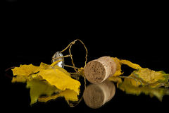 Leaves and cork Royalty Free Stock Image