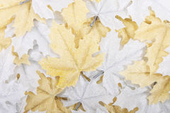 Leaves decoration background. Silver and golden leaves decoration background Royalty Free Stock Photography