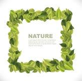 Leaves dialog Stock Photo