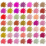 Leaves of different colors. Raster Royalty Free Stock Photography