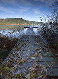 Leaves on a dock by the lake. Royalty Free Stock Photos