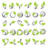 Leaves. Elements for design. Royalty Free Stock Photos