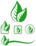 Leaves emblem set Royalty Free Stock Photography