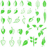 Leaves emblem set Royalty Free Stock Images