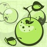 leaves för äpplebakgrundsgreen Fotografering för Bildbyråer