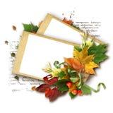 leaves för äpplehöstram Fotografering för Bildbyråer