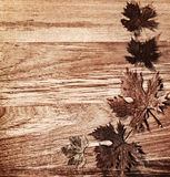 leaves för höstbakgrundskant över trä arkivfoto