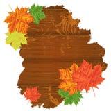 leaves för höstbakgrundskopia över träavstånd Med kopiera utrymme Royaltyfria Foton