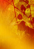 leaves för konstbjörklast fotografering för bildbyråer