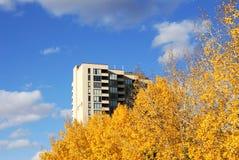 leaves för lägenhethösthighrise royaltyfri bild