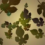 leaves för leaf för ram för abstrakt höstbakgrund färgrika Fotografering för Bildbyråer