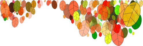 Leaves in fall. Colorful fall leaves illustration on white background Royalty Free Stock Photos