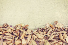 Leaves fall, autumn on street background texture Royalty Free Stock Images