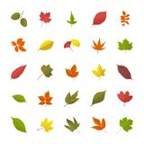 Leaves In Fall Flat Icons vector illustration