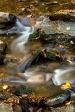 Big bushkill creek in fall. Leaves fall in to the big bushkill creek Stock Photo