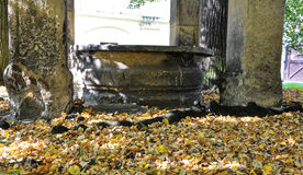 Leaves falles near the pillars. Leaves from the trees near the stone pillars and round shape pond Stock Photos