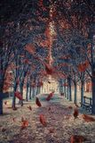 Leaves falling in the park in Paris stock images