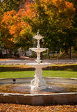 Leaves fill old fountain Stock Photography