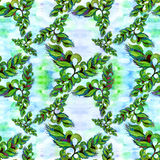 Leaves and flowers - a decorative composition Watercolor. Perfumery and cosmetic plants. Seamless pattern. Wallpaper. Watercolor b Stock Photos