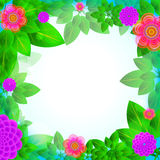 Leaves and flowers frame Royalty Free Stock Image