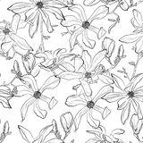 The leaves and flowers of Magnolia seamless pattern background. Hand drawn nature painting. Black white illustration vector illustration