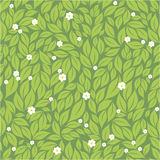 Leaves and  flowers seamless pattern Royalty Free Stock Photography