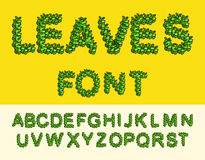 Leaves Font Green. Eco alphabet. Letters from the trees leaves vector illustration