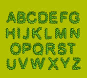 Leaves  Font Green.  letters from the trees leaves Royalty Free Stock Images