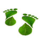 Leaves footprints on a white background, relating to the environ Stock Photos