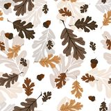Leaves forest pattern seamless on white background stock photography