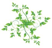 Leaves in the form of abstract banner. This is file of EPS10 format Stock Image