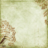 leaves för green för bakgrundsfågeldesign grungy Royaltyfria Foton