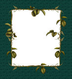 Leaves Frame 2 Stock Photography
