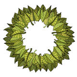Leaves frame Royalty Free Stock Image