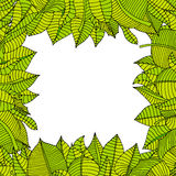 Leaves frame Royalty Free Stock Photo