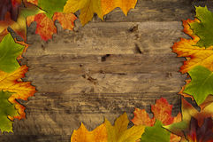 Leaves frame on wood Royalty Free Stock Photo