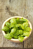 Leaves of fresh basil in a bowl Royalty Free Stock Photography